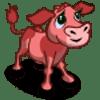 Pink Calf Se vende por: 120 Tamaño: 1x1