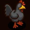 Black Chicken Coste: 15 Se vende por: 20 Tamaño: 1x1