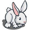 Rabbit Regalo Se vende por: 60 Tamaño: 1x1
