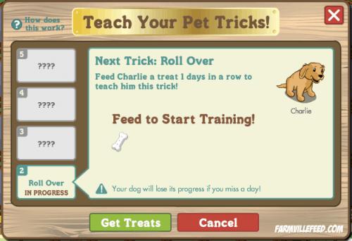 Alimenta a tu perro adulto en Farmville y enseñale trucos