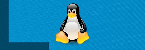 Comandos imprescindibles de Linux para usar la línea de comandos