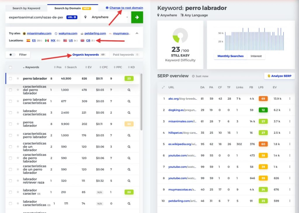 """""""Search Keywords by Domain"""" de KwFinder"""